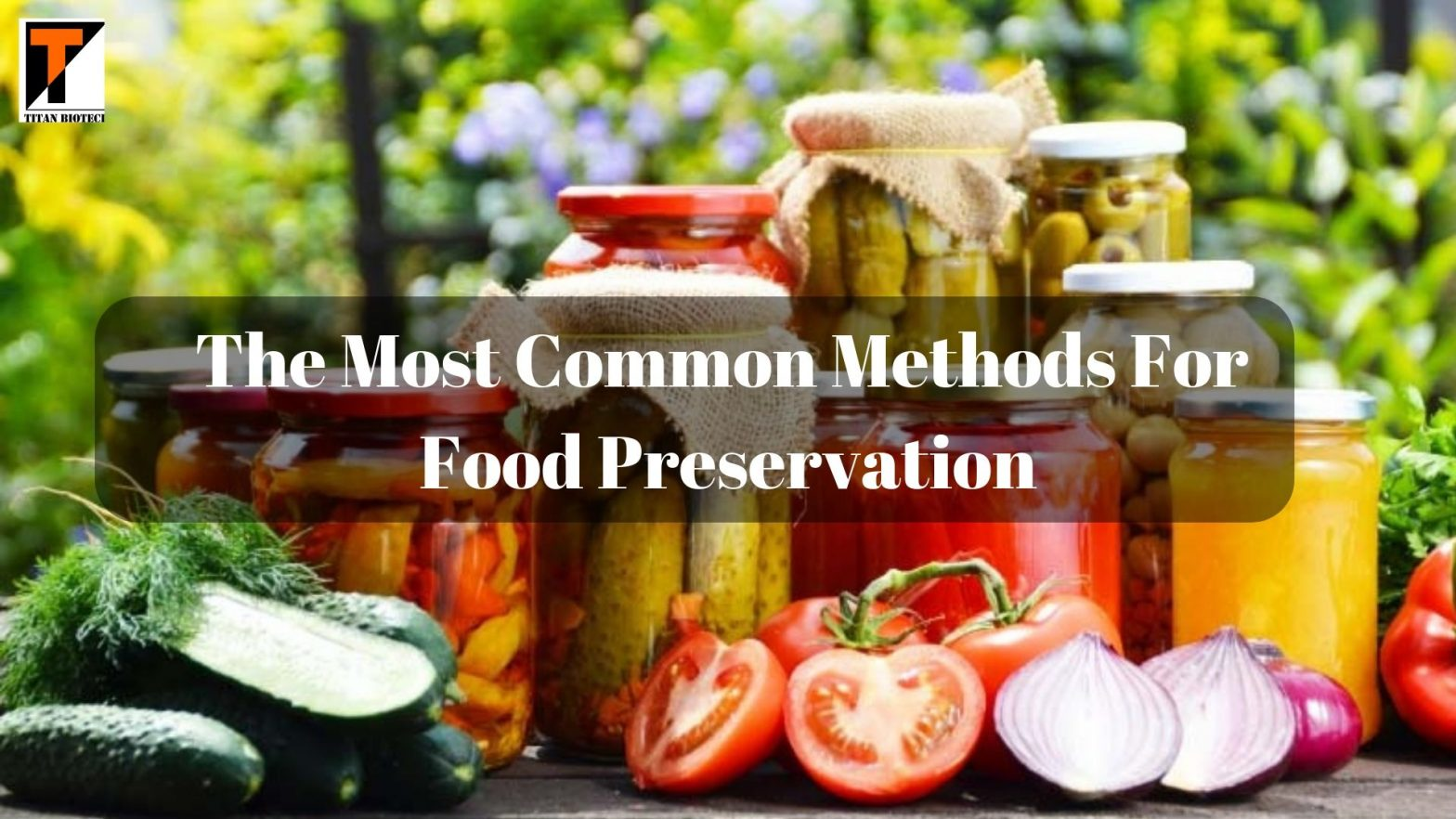 The Most Common Methods for Food Preservatives